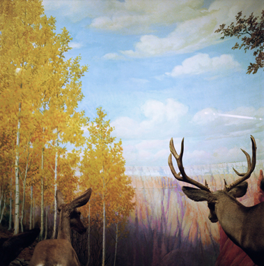 Albrecht and Corwin,  Canyon Deer, 2000 19 x 19 inches Archival pigment print