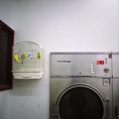 Laundromat, 1997  19 x 19 inches Archival pigment print