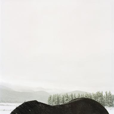 Horseback Mountain, 1999  36 x 36 inches Archival pigment print