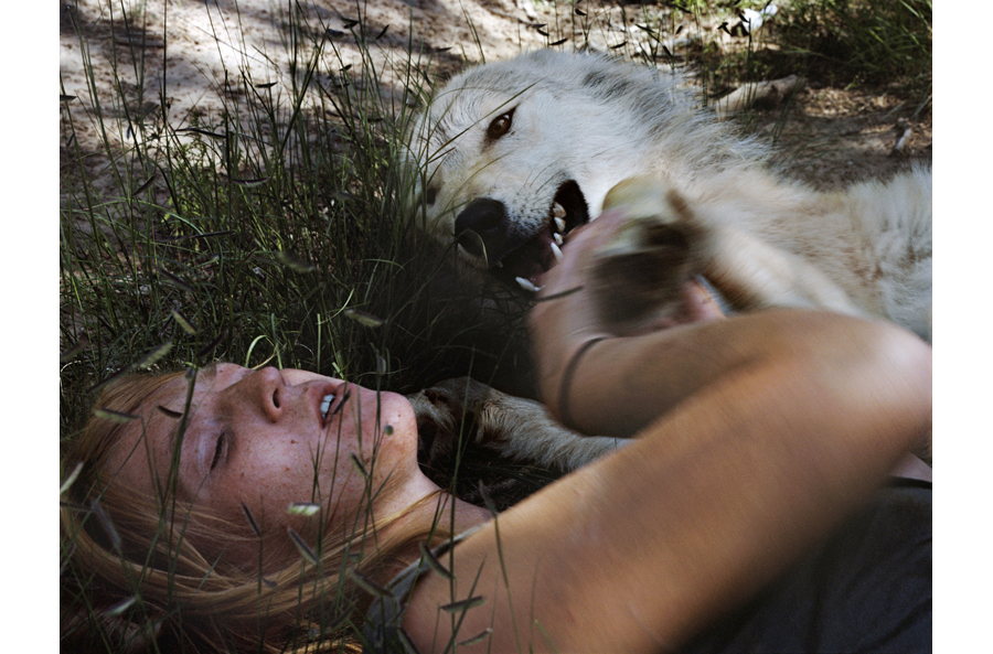 HLynton_Angel, Wolf, New Mexico.jpg