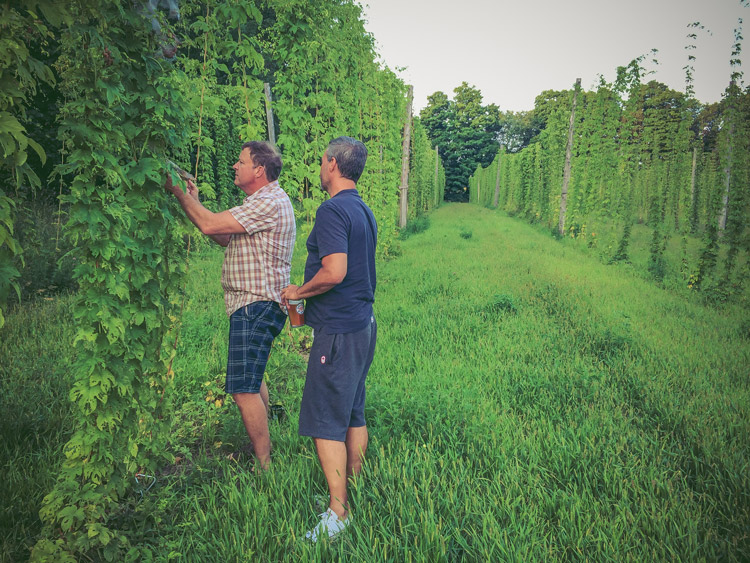 Duggans-Brewery--Parkdale-Toronto-7.jpg