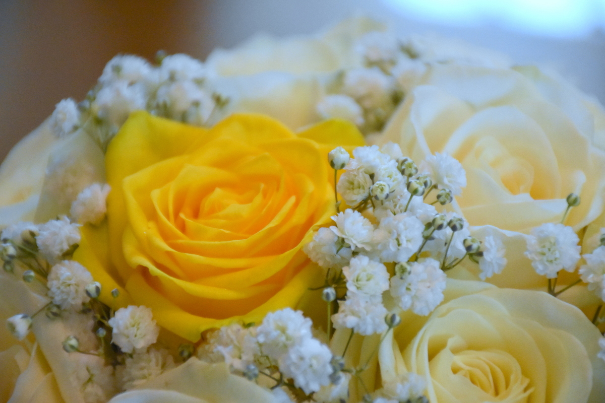 Oakley Hall Wedding Photography-001.JPG