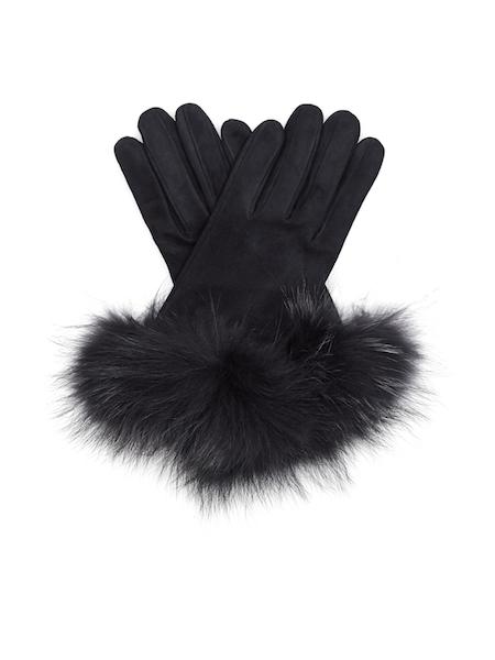 Gloves.jpeg