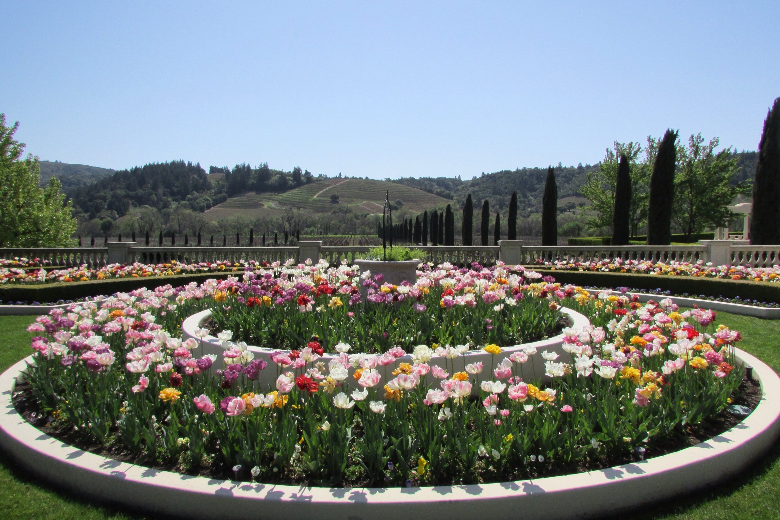 Visit this winery for it's perfectly manicured lawns and stunning flowery landscapes at a reasonable tasting price.