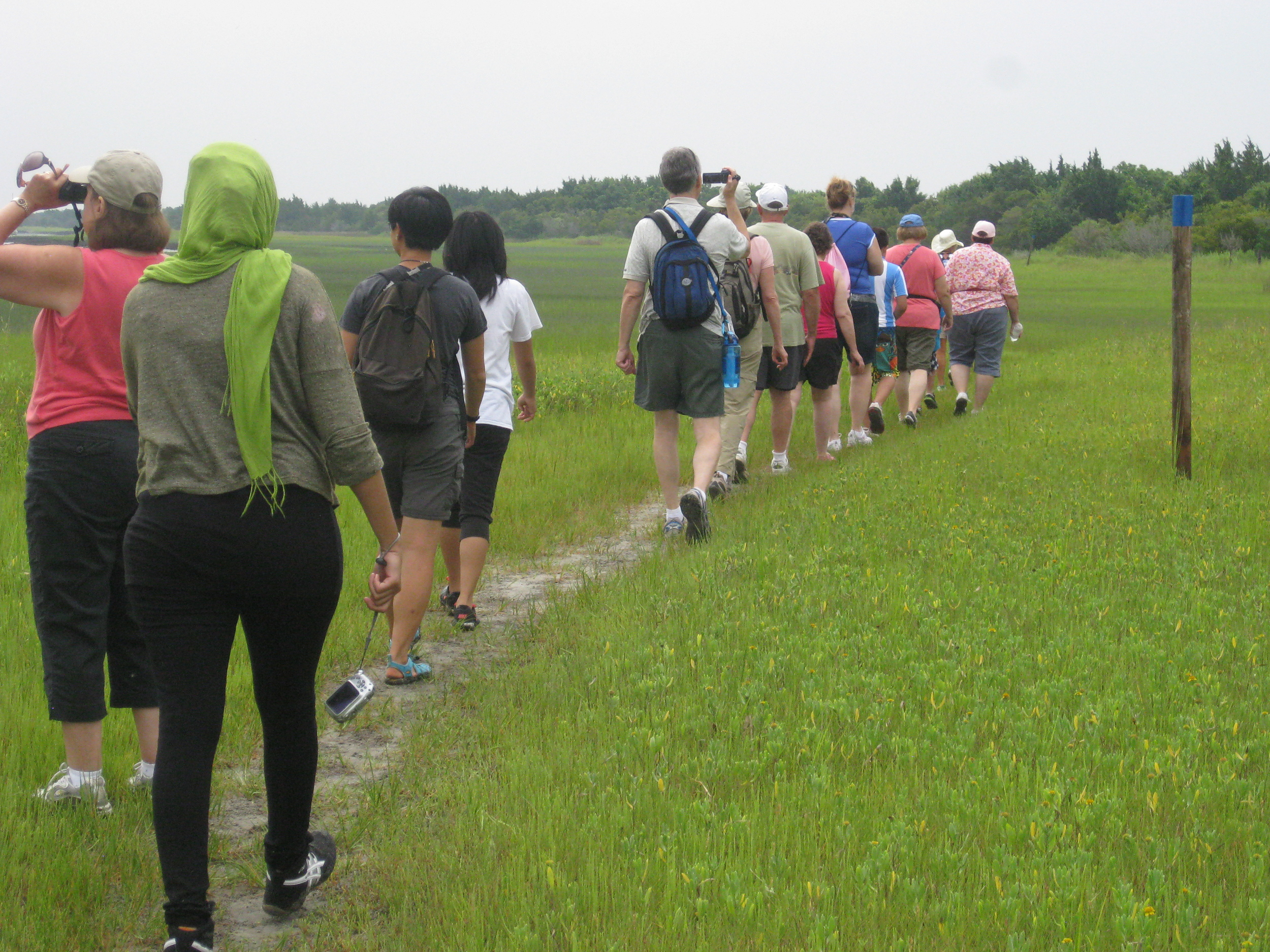 Field trip with other visitors to the Rachel Carson Estuary Reserve, 2013.