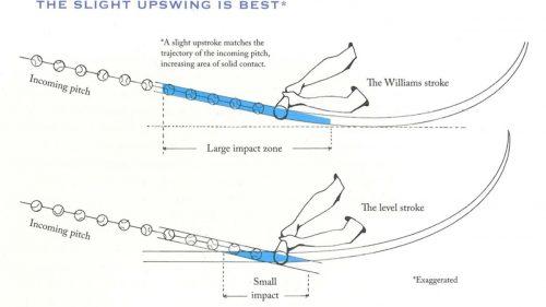 The Swing Plane: Baseball vs. Softball — Delta Sports PerformanceDelta Sports Performance