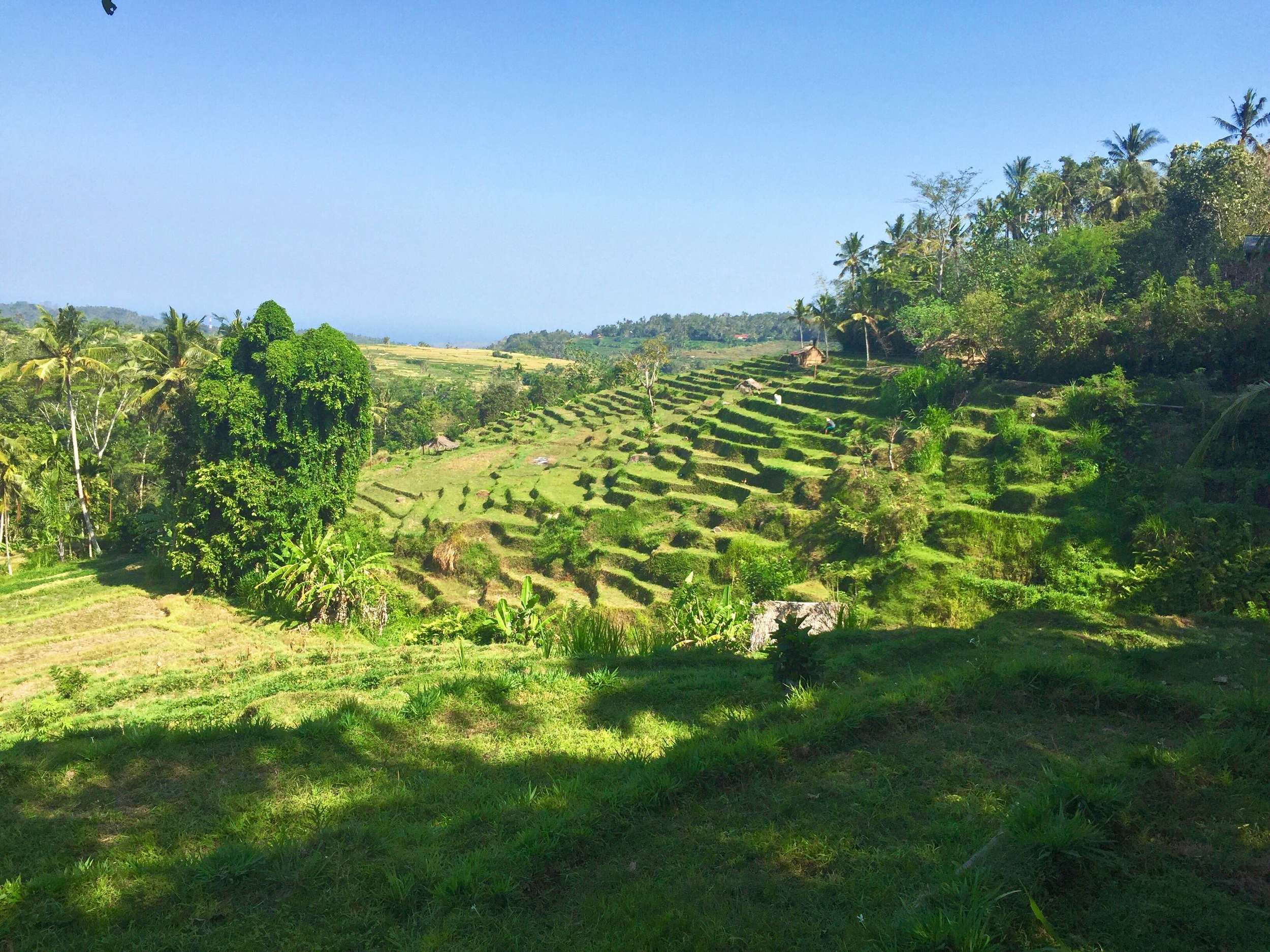 That unforgettable moment you reach the top of the mountain, turn a corner, and realize you're in Bali. (c) 2015 Gail Jessen, A Series of Adventures