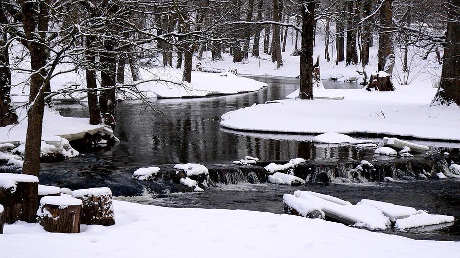 Latvian Winter, by Bianca Baker.