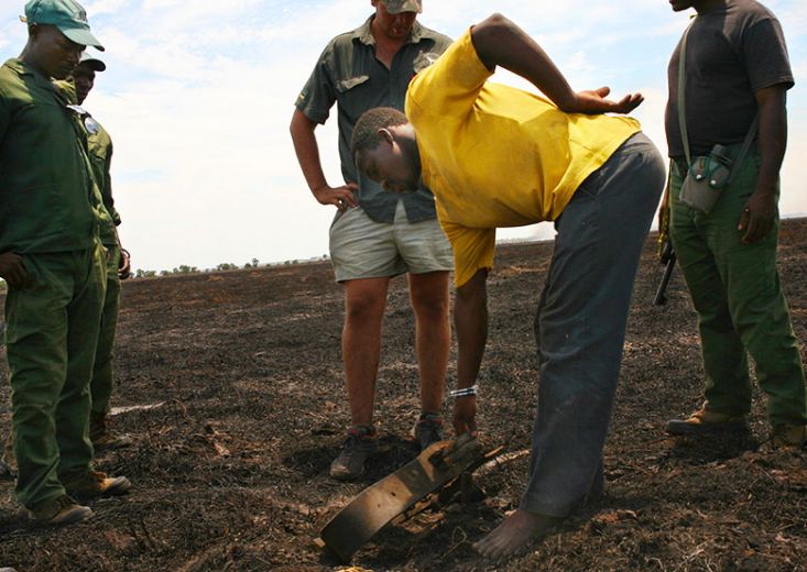 A bushmeat poacher in the custody of the antipoaching squad picks up a trap he had set. (Photo: Laura Krantz)