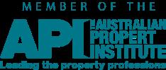 API_logo_3.png