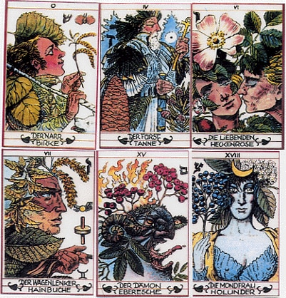 Plant-inspired foreign taro deck?