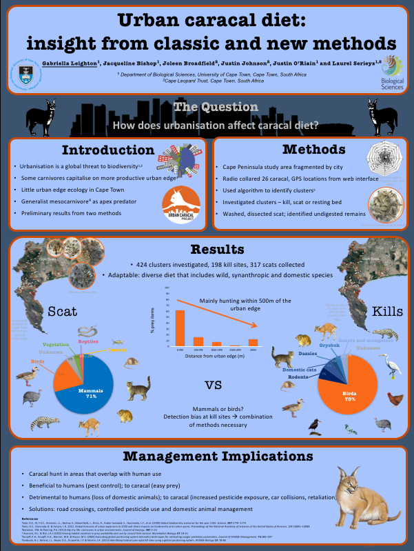 Preview of the poster I presented at the symposium