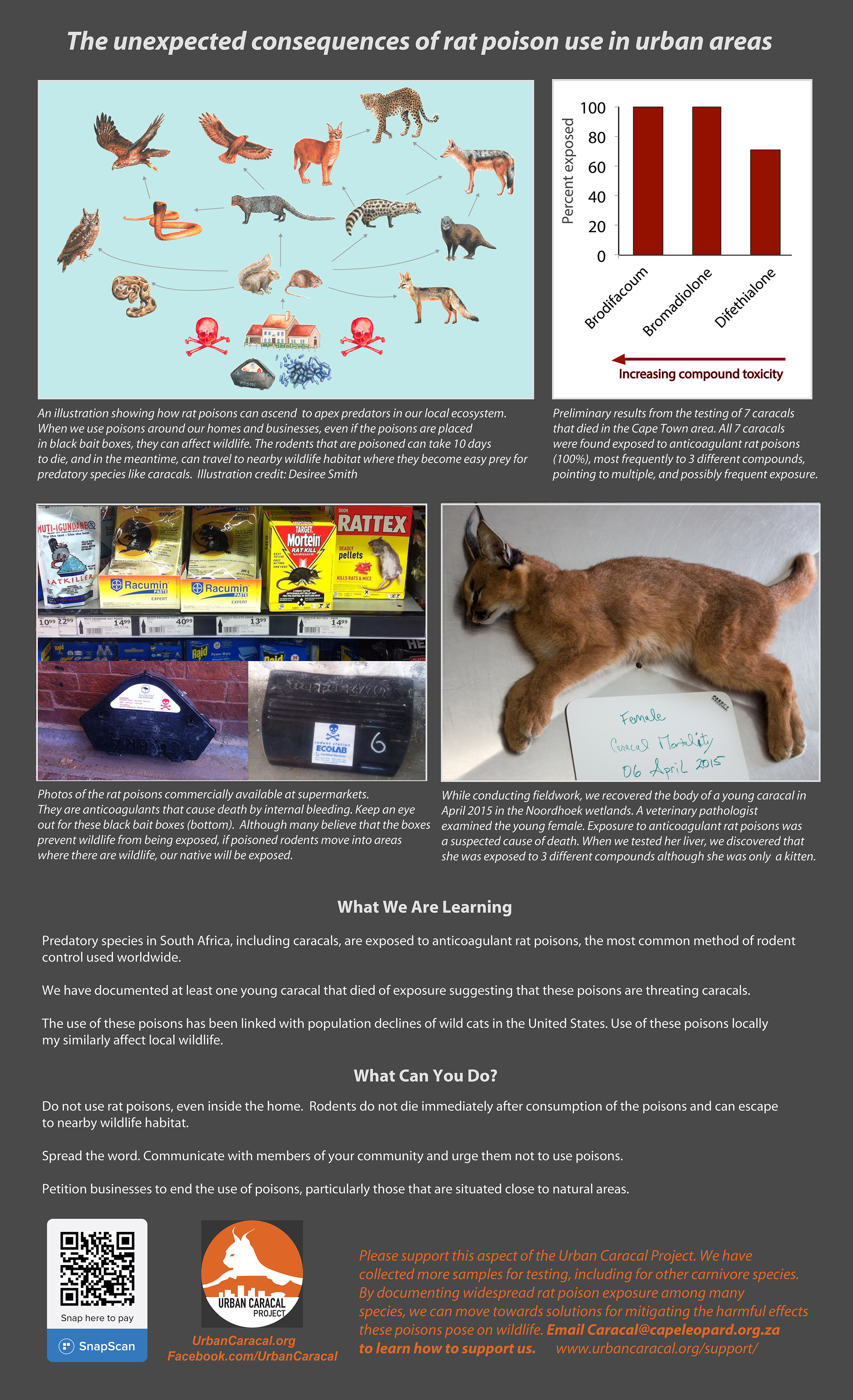 The unexpected consequences of rat poison use in urban areas - March 21, 2016