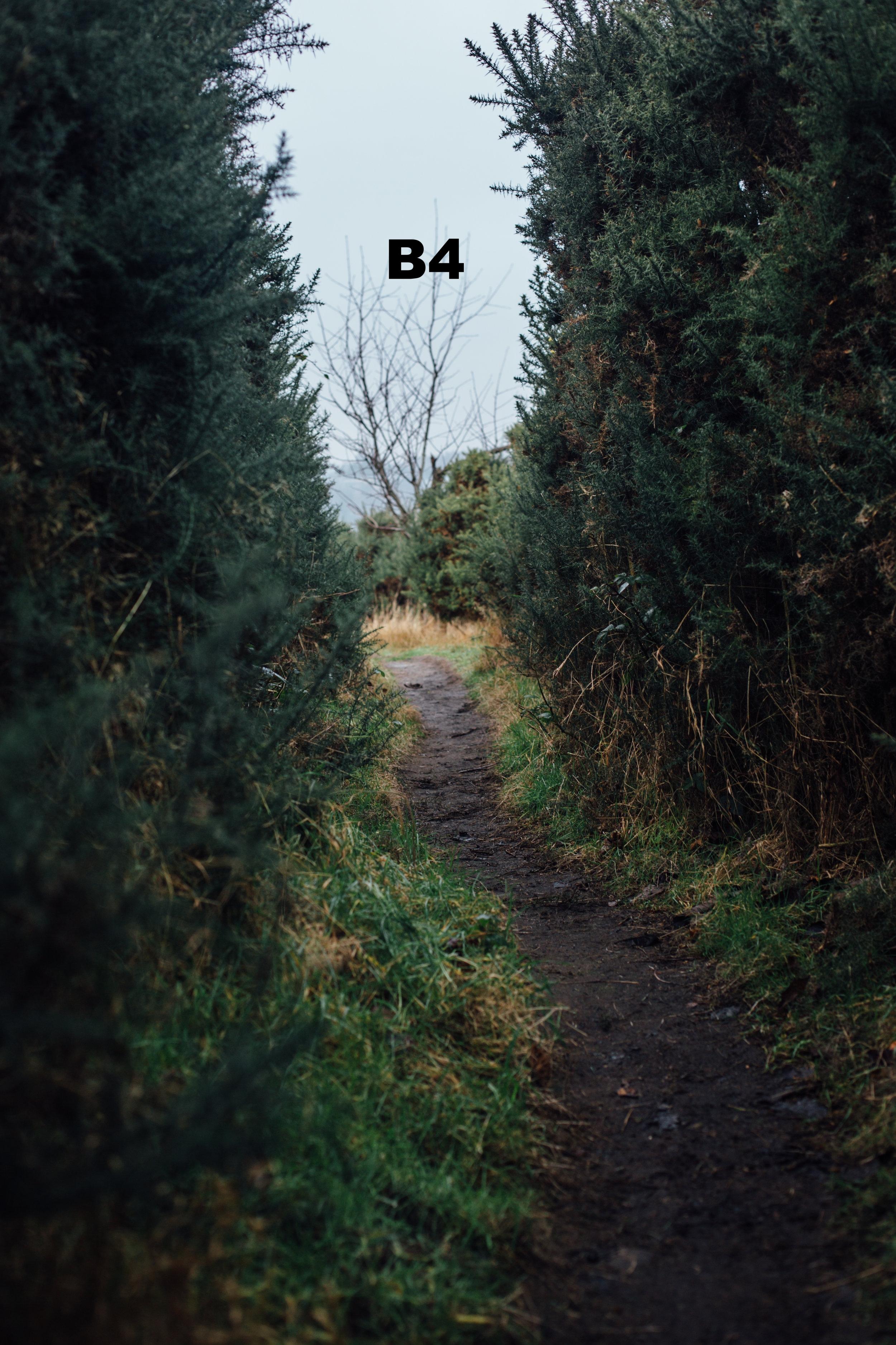 Blackford Hill 2 copy.jpg