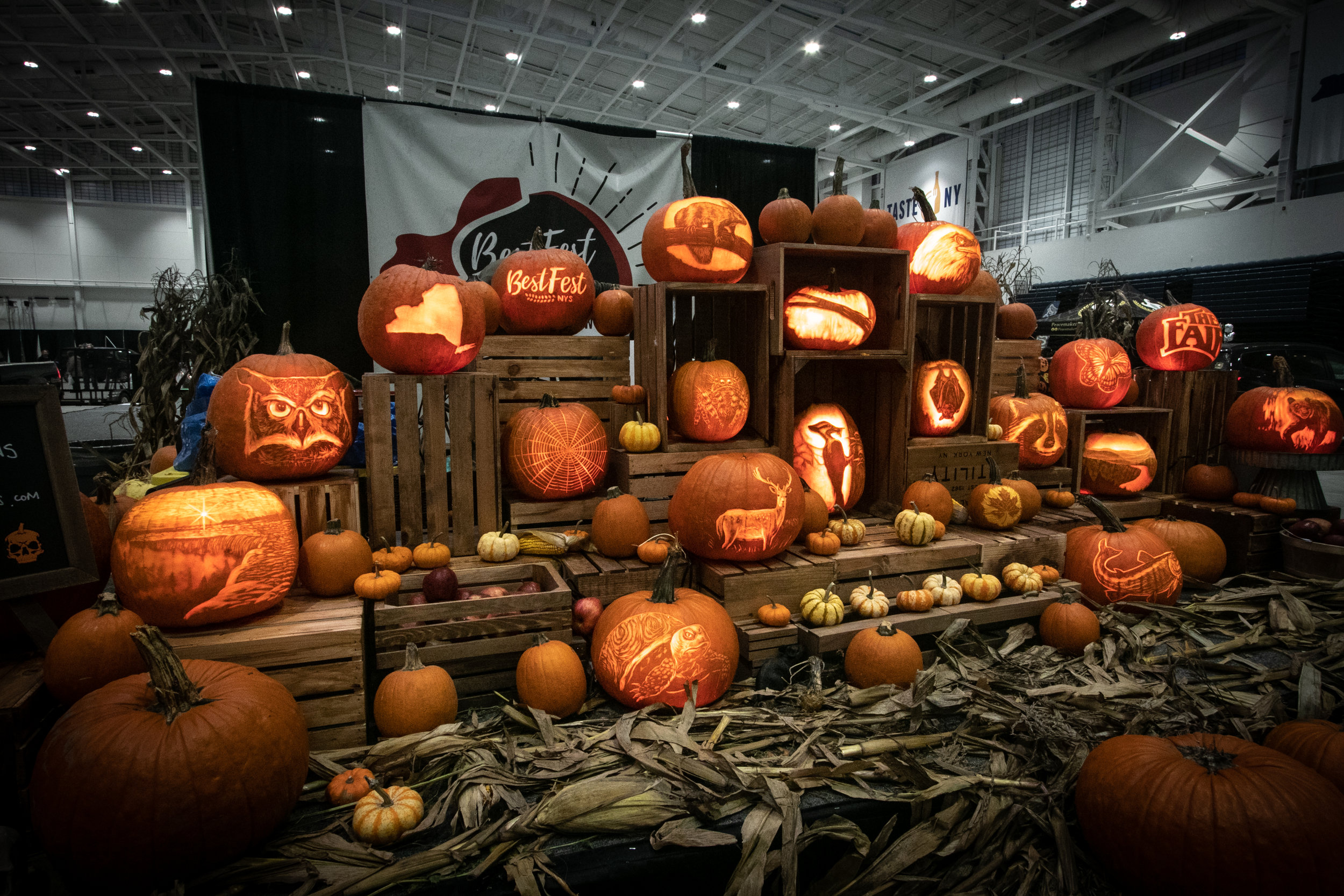 Pumpkin installation created by Marc and Chris for Best of the Best in Syracuse, NY.