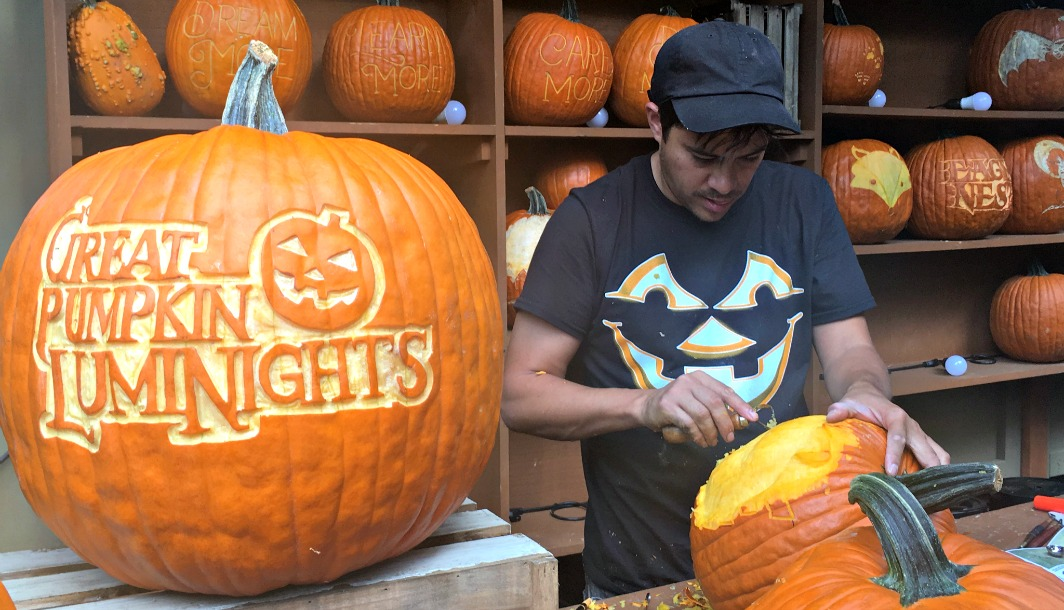 Chris carving for Dollywood in Pigeon Forge, Tennessee