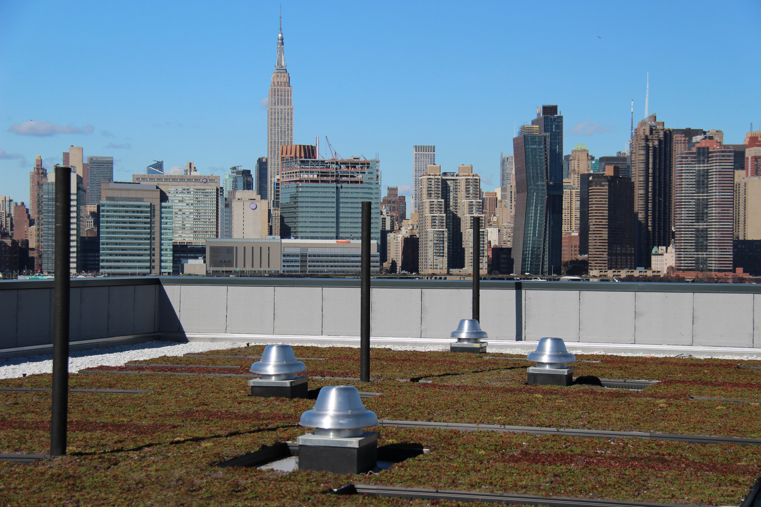 Greenpoint Roof Image 3.jpg