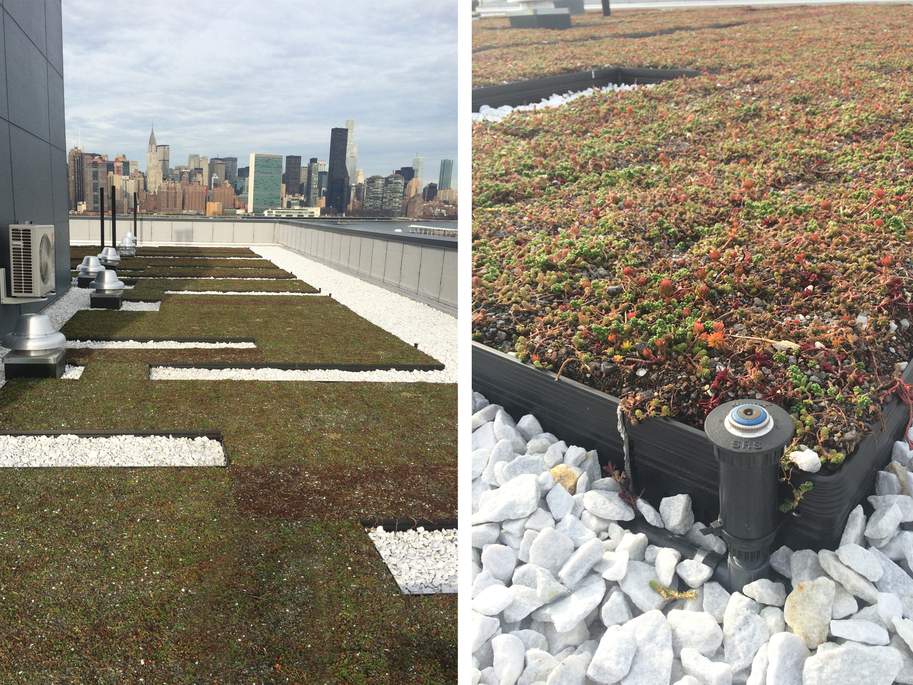 Greenpoint Roof Image 34.jpg