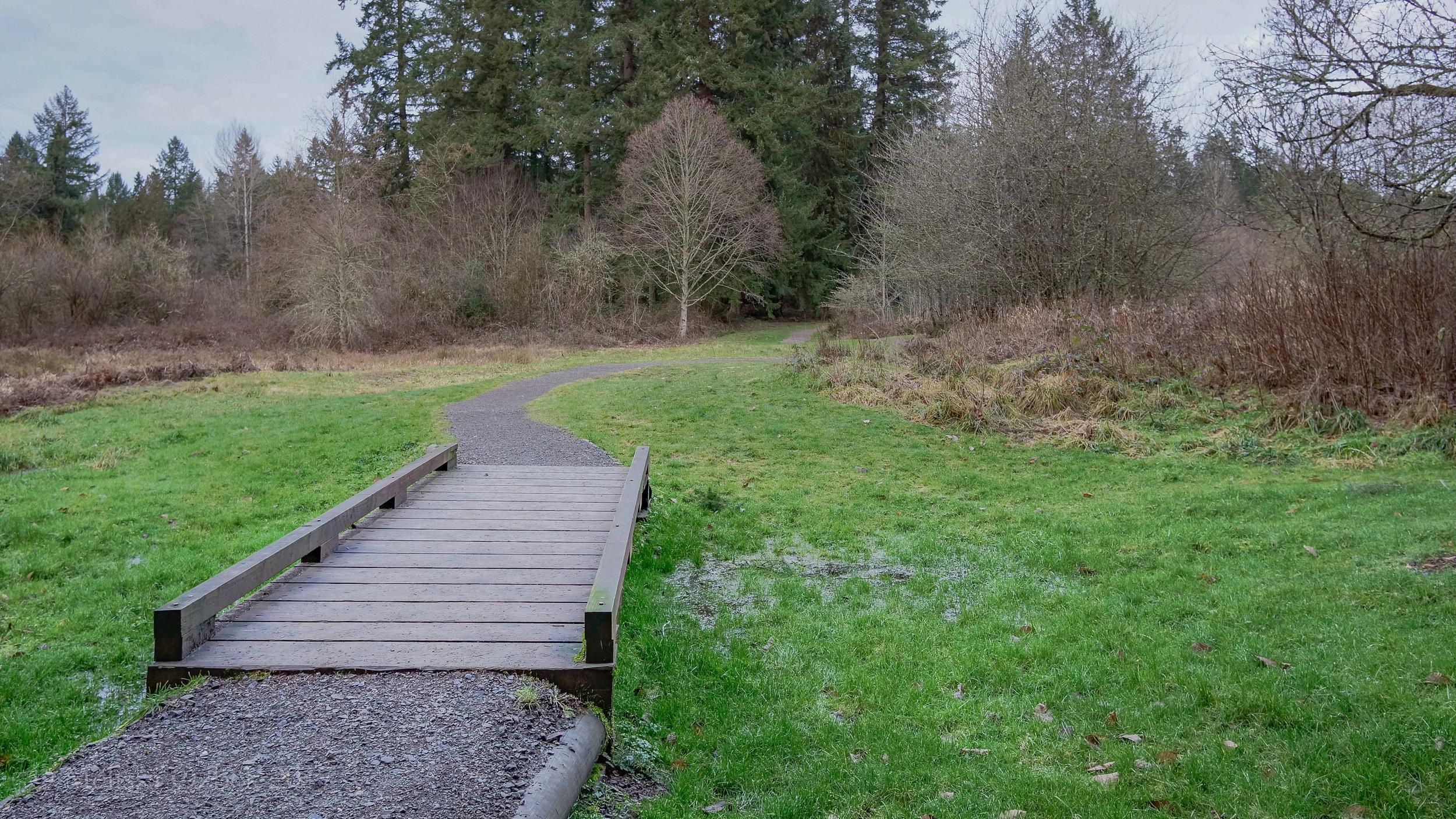 12. Evans Creek Preserve