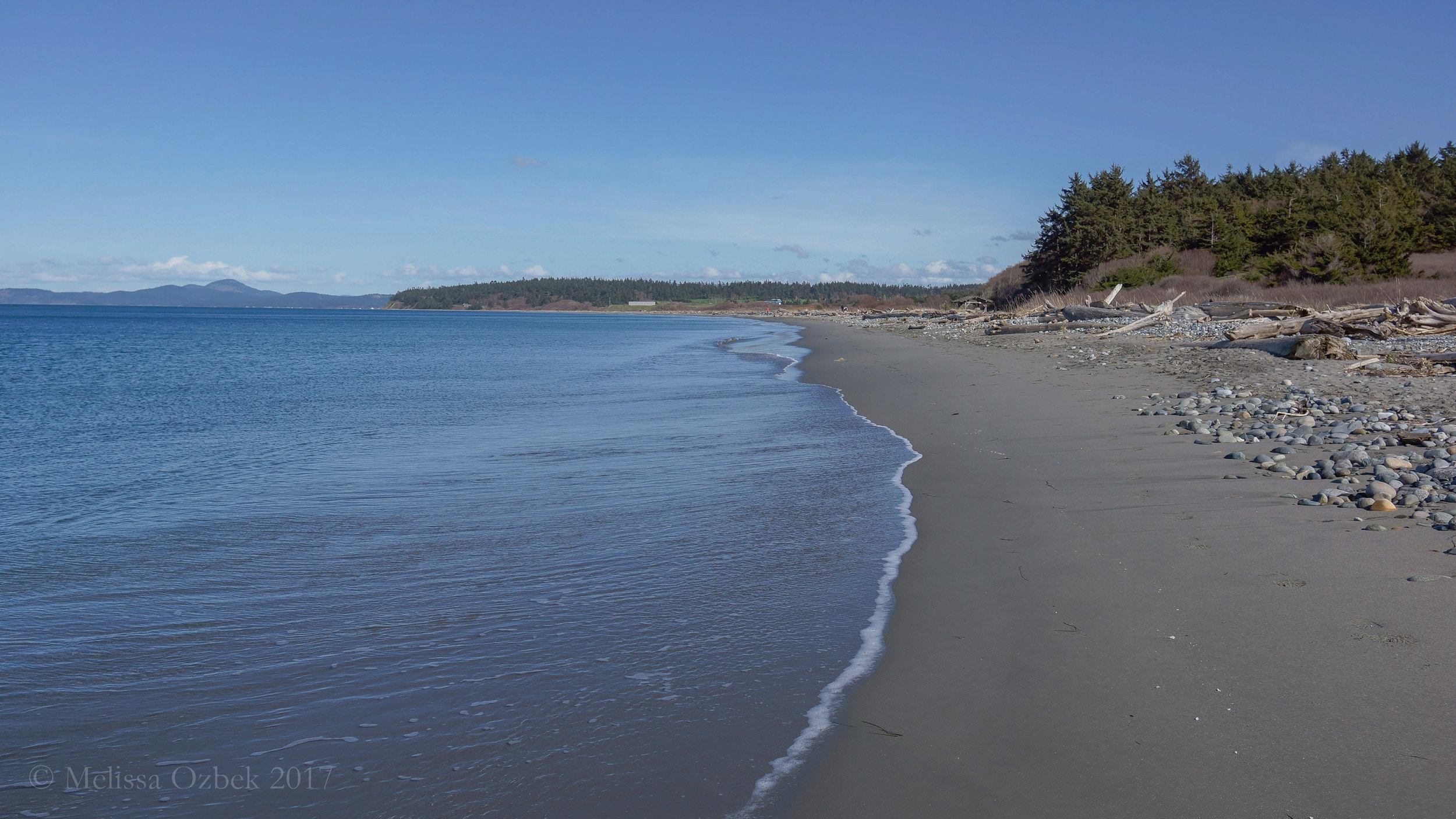 5. Beach at Joseph Whidbey State Park