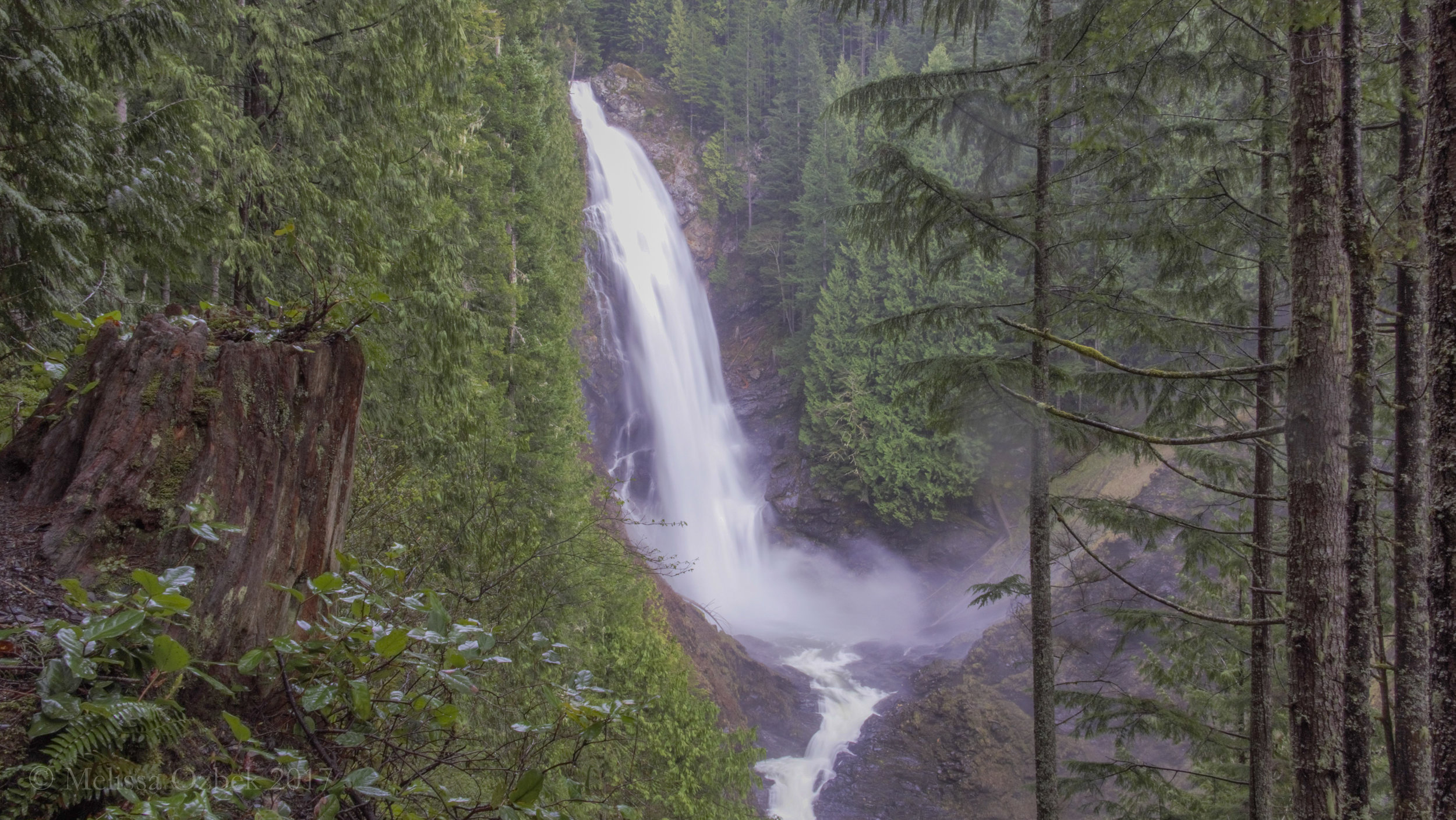 2. Woody Trail to Wallace Falls
