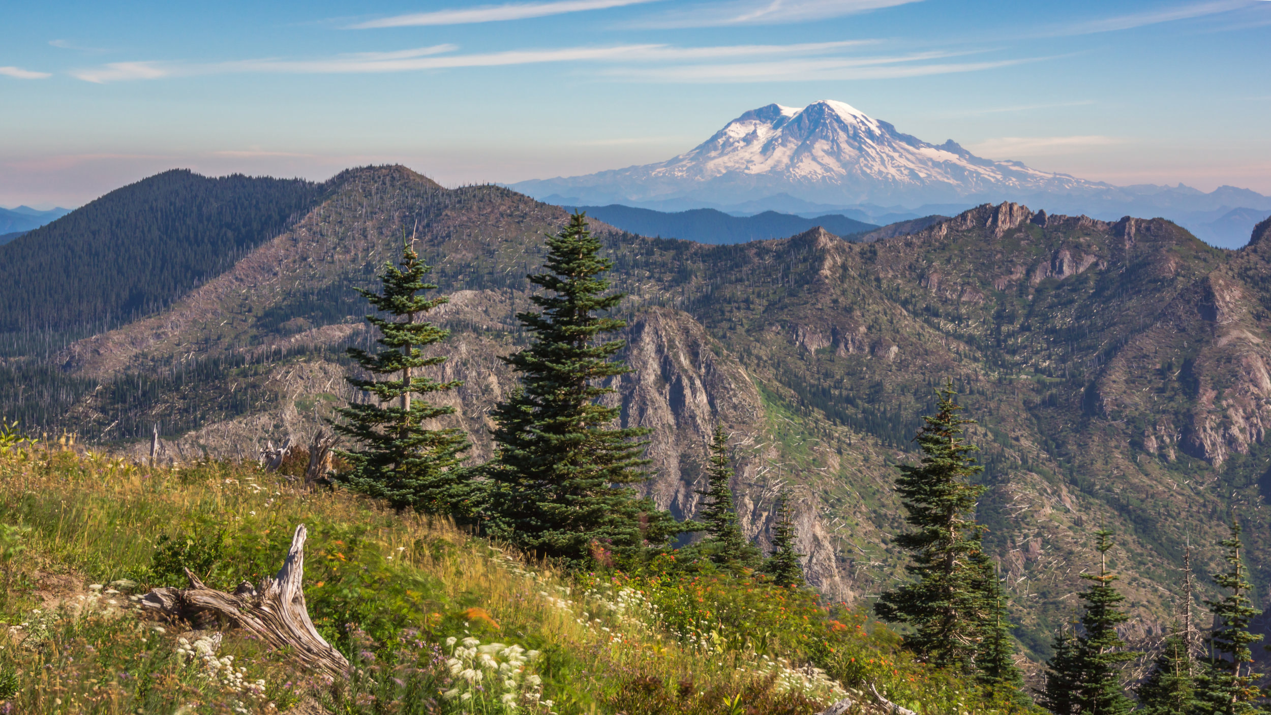 Mount Rainier from Coldwater Peak.