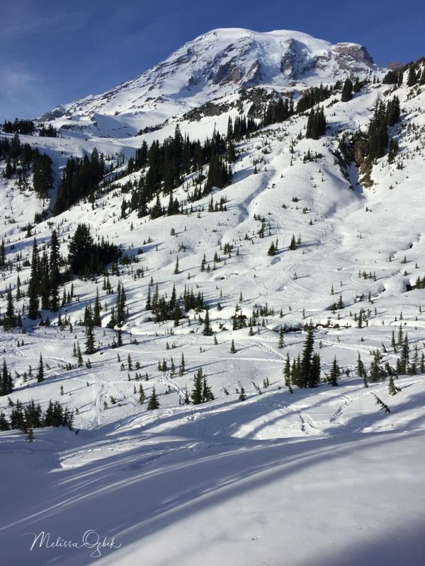 Looking northwest towards Mount Rainier from 4th Crossing