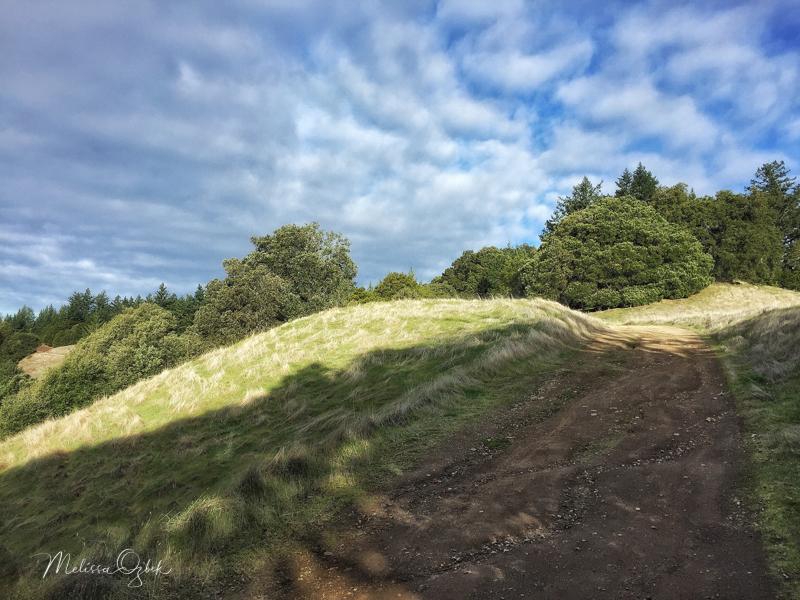 Long Ridge Preserve