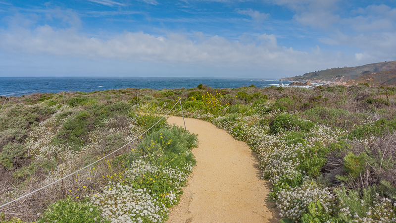 Bluff Trail at Garrapata State Park