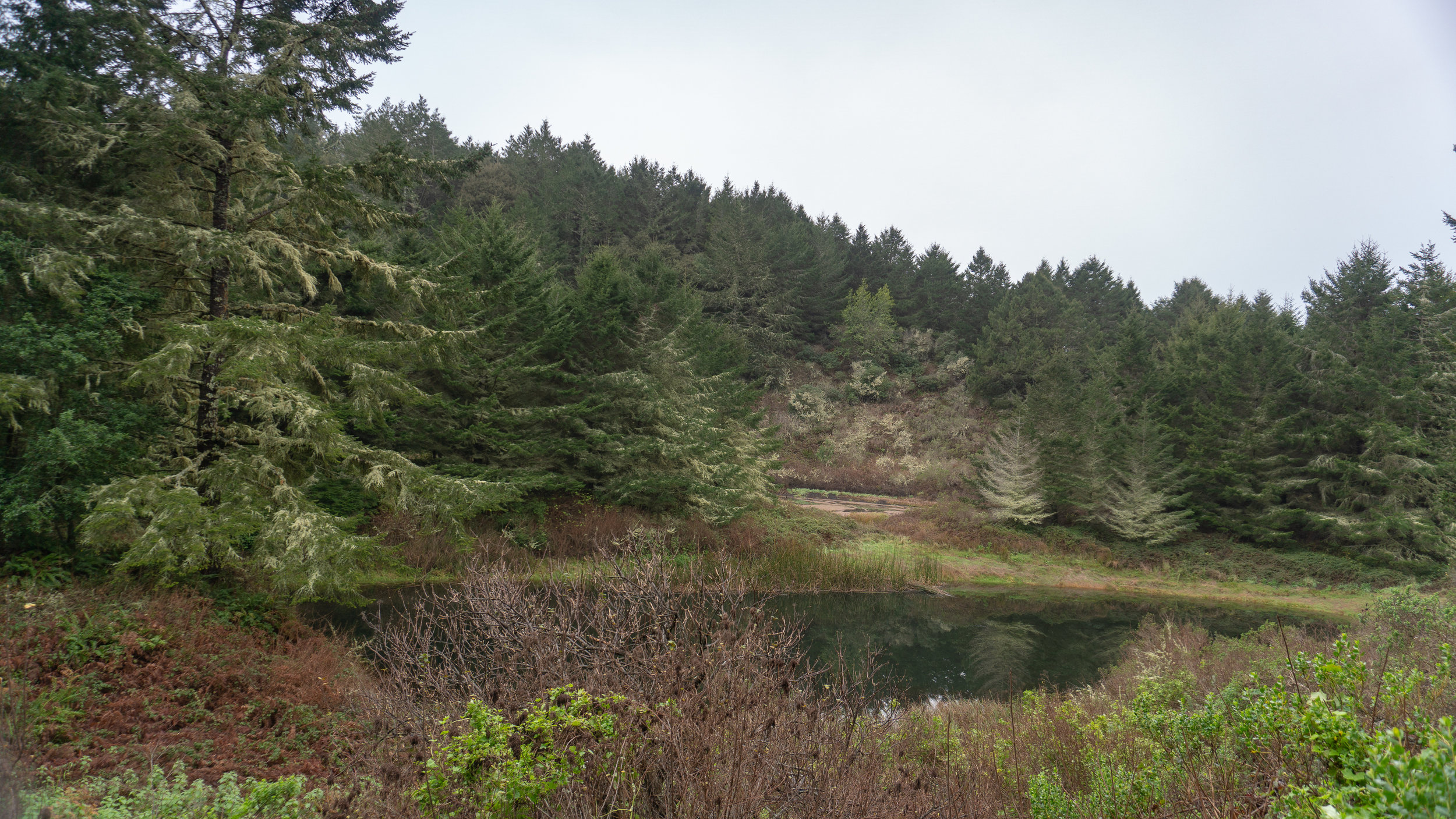 Alamere Falls-16.jpg