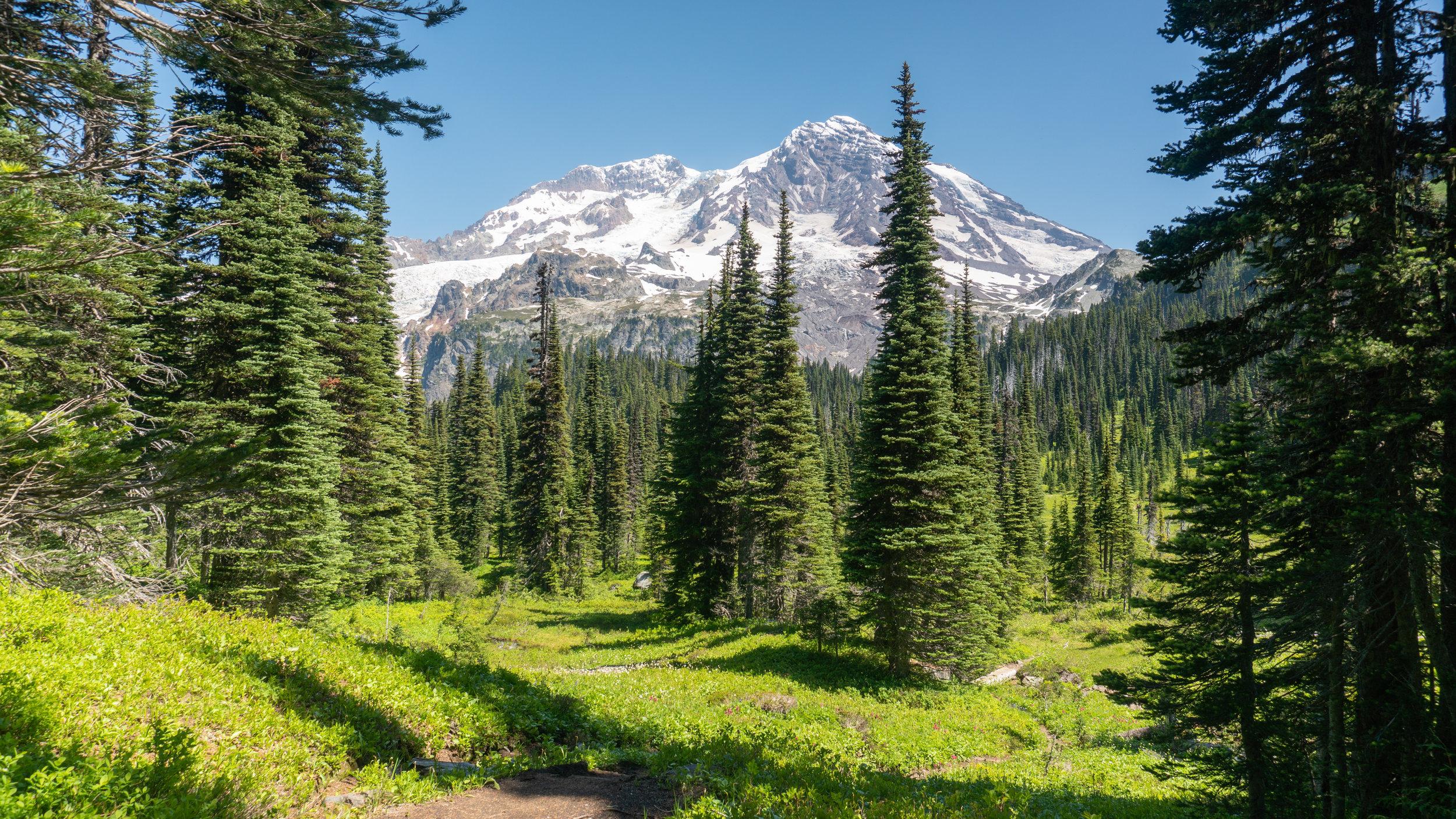 Mount Rainier on the way to Mirror Lakes