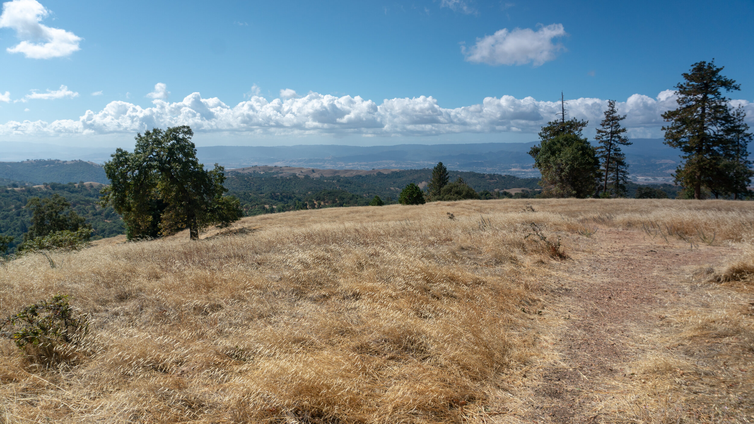 View of the Santa Clara Valley and Santa Cruz Mountains from Pine Ridge