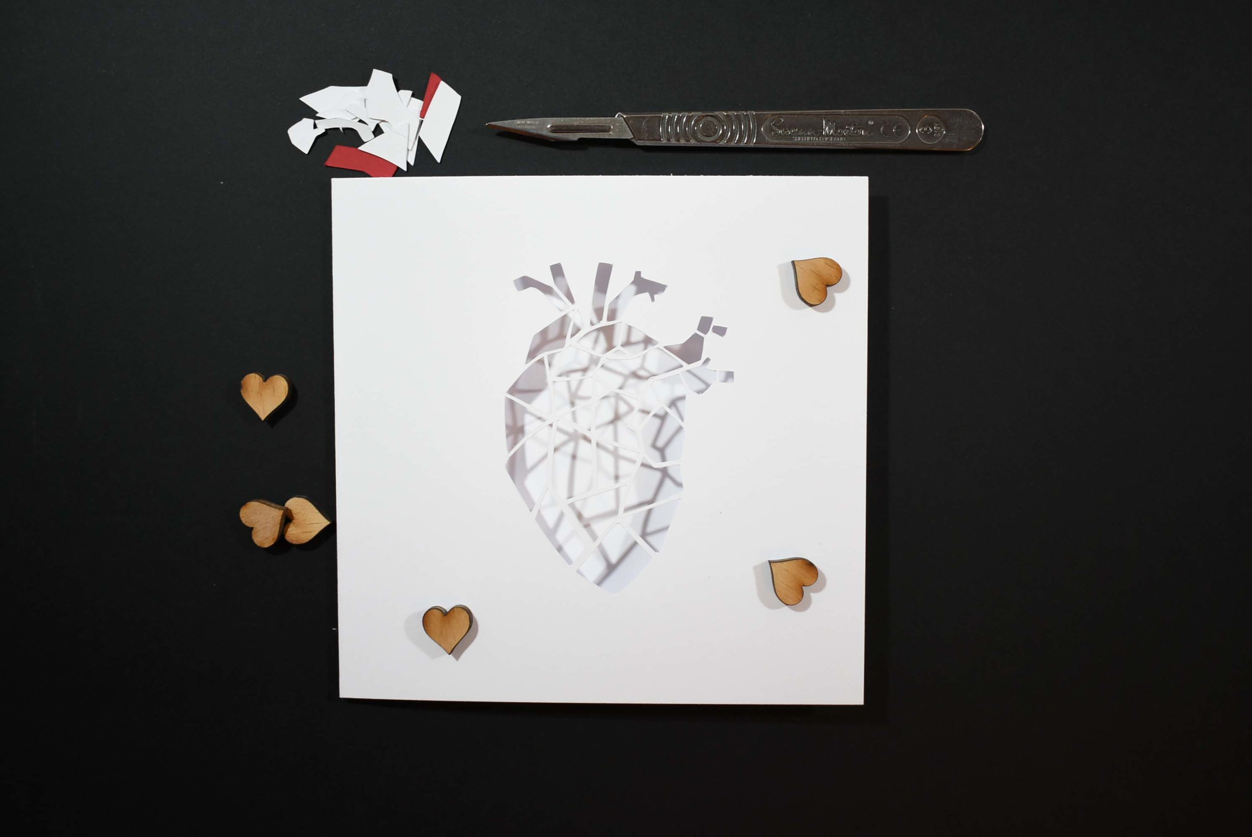 anatomical geometric heart cut3.jpg