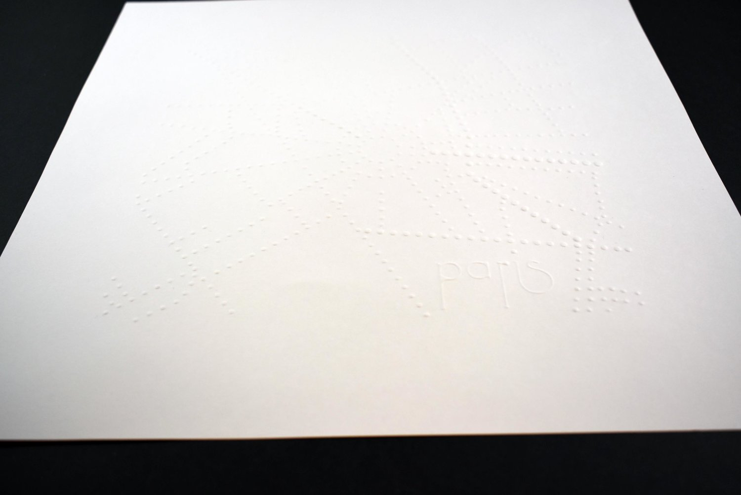 Kartegraphik braille map paris blind embossed.jpg