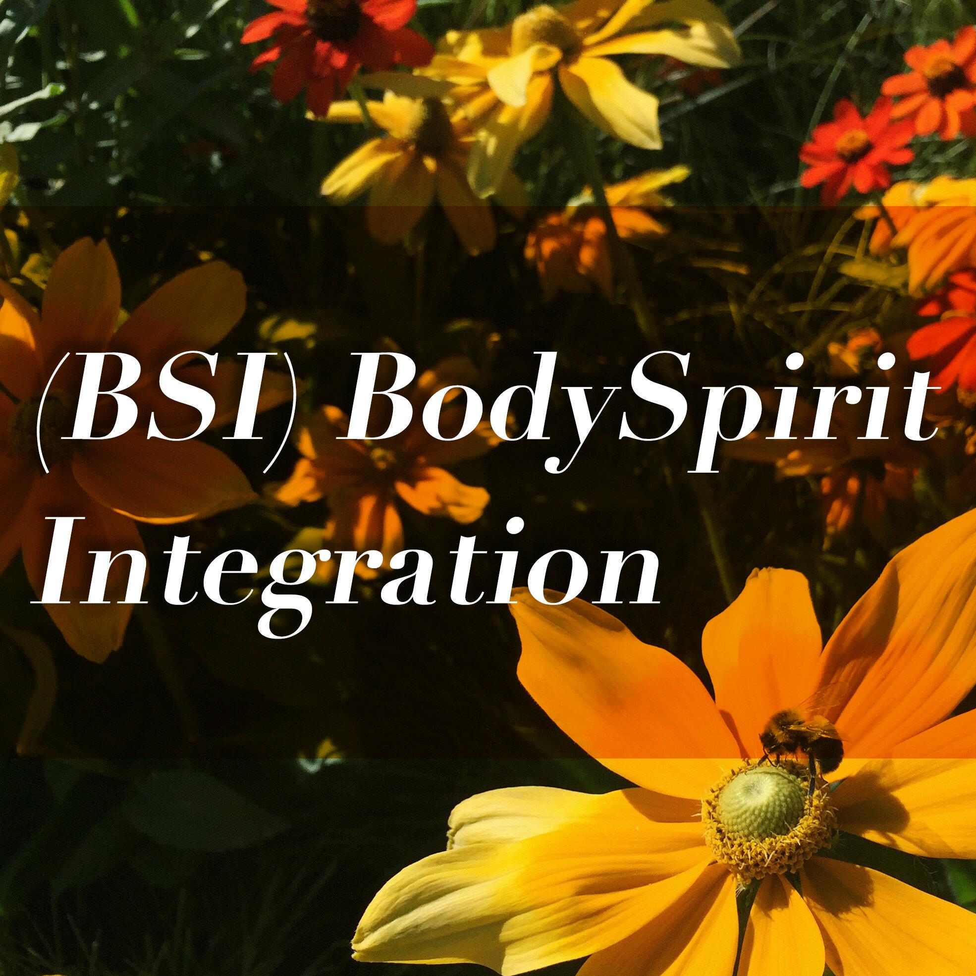 BSI_intergration.jpg