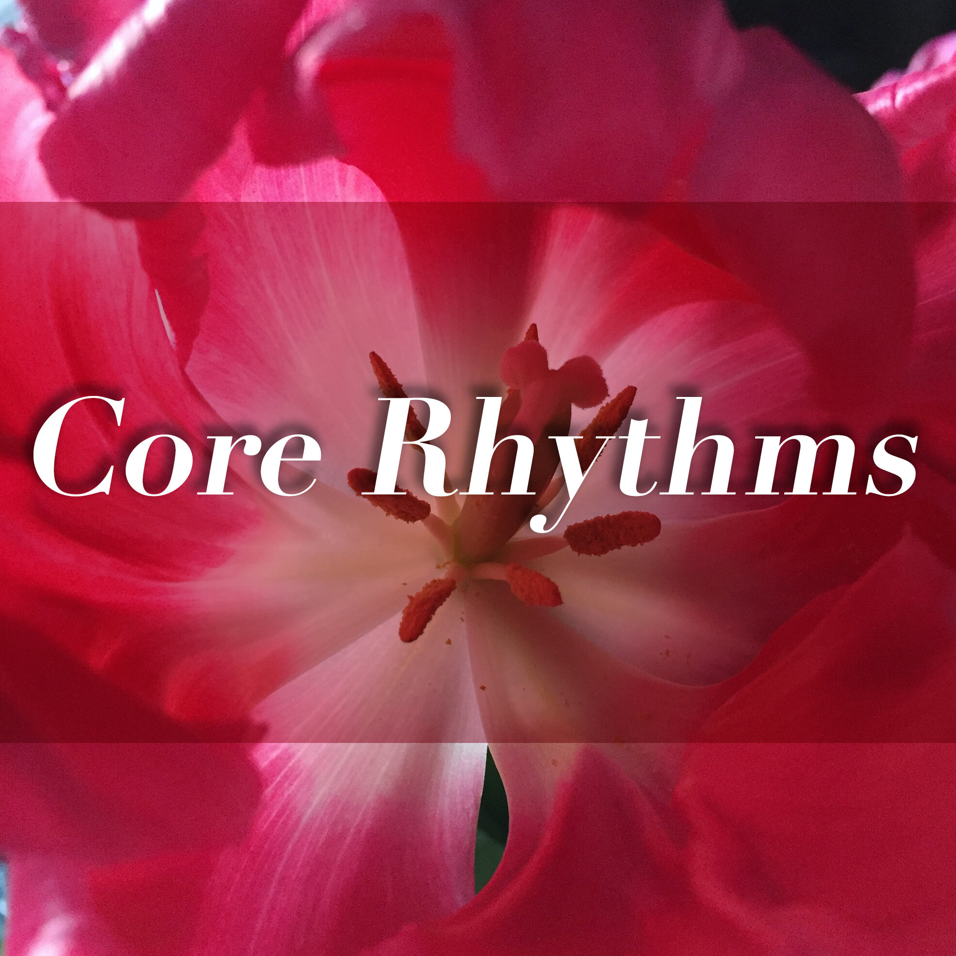 core_rhythms.jpg