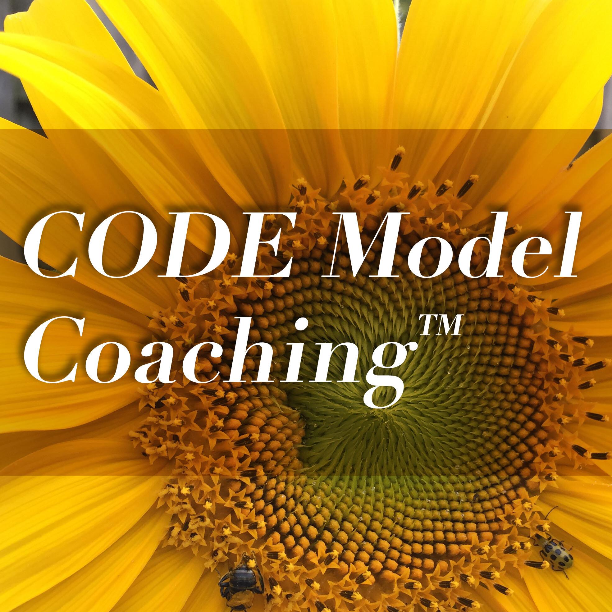 Code_Model_coaching.jpg