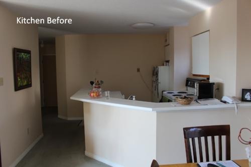 Bob - kitchen before.JPG