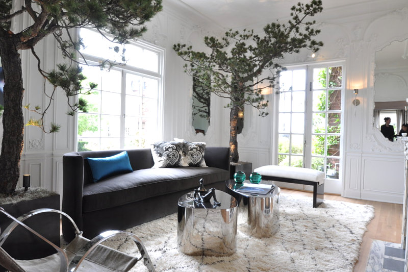 San-Francisco-living-room-with-towering-trees.jpg