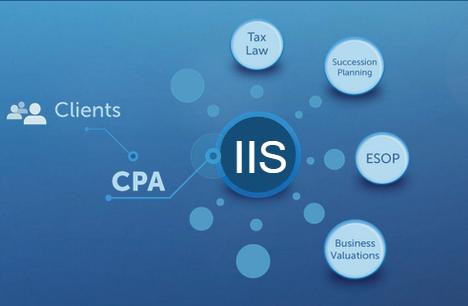 IIS model.png