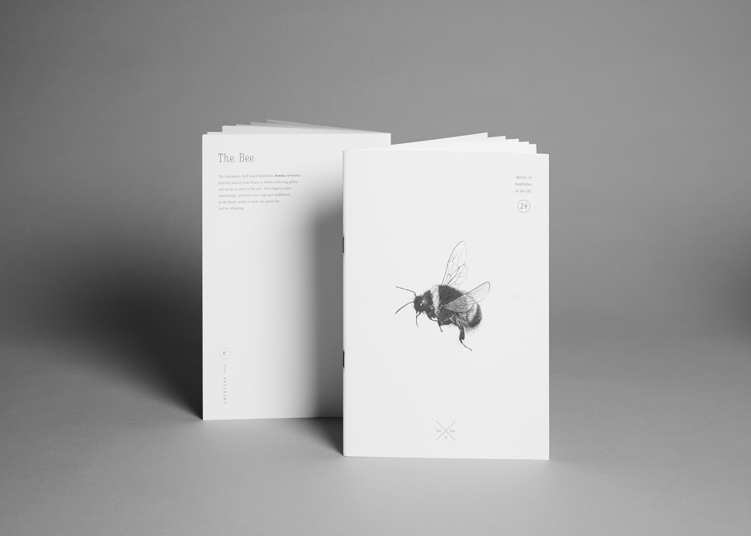 Creature Candy bee notebook