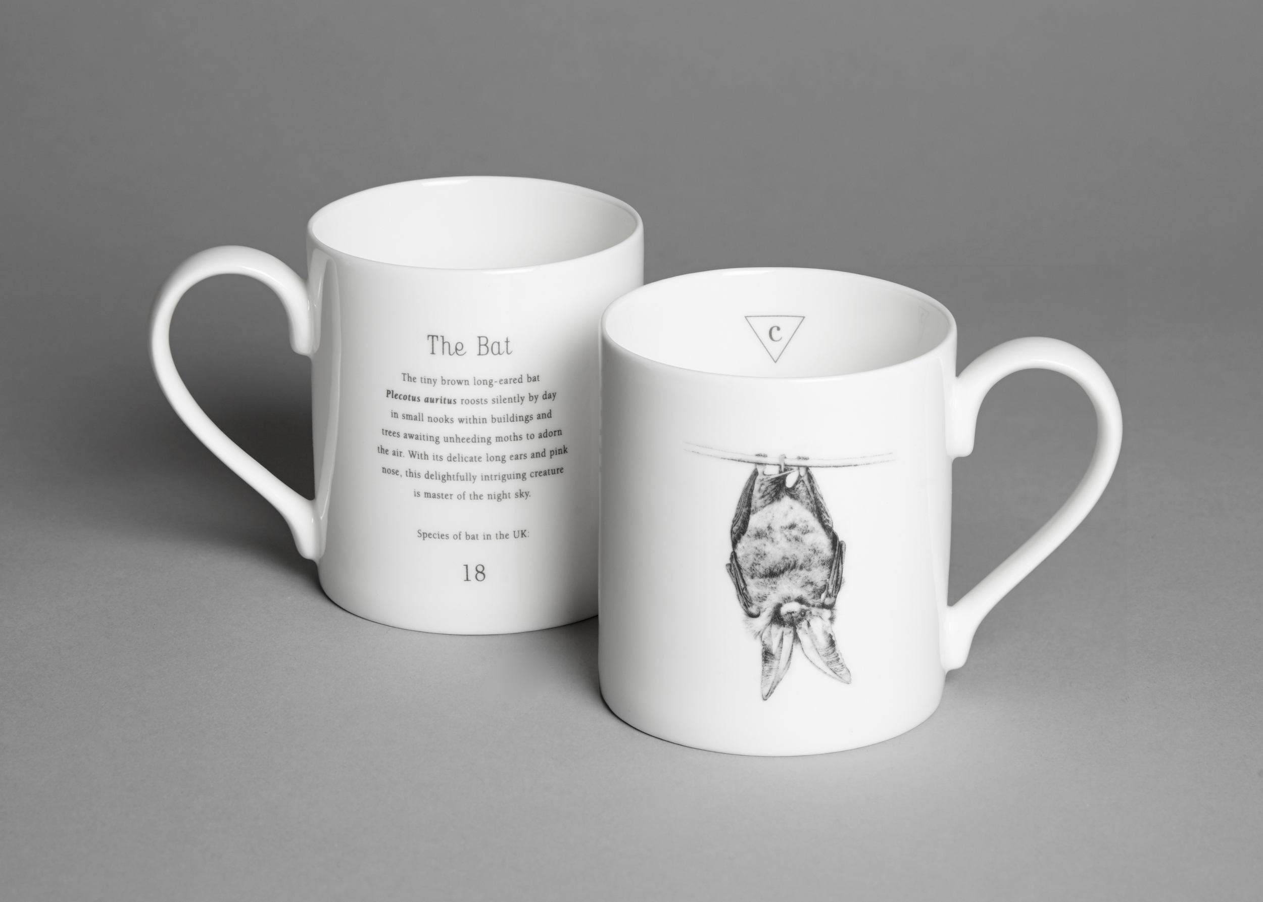 English fine bone china bat mug £14.00 (including a £1.40 donation to the  Bat Conservation Trust )