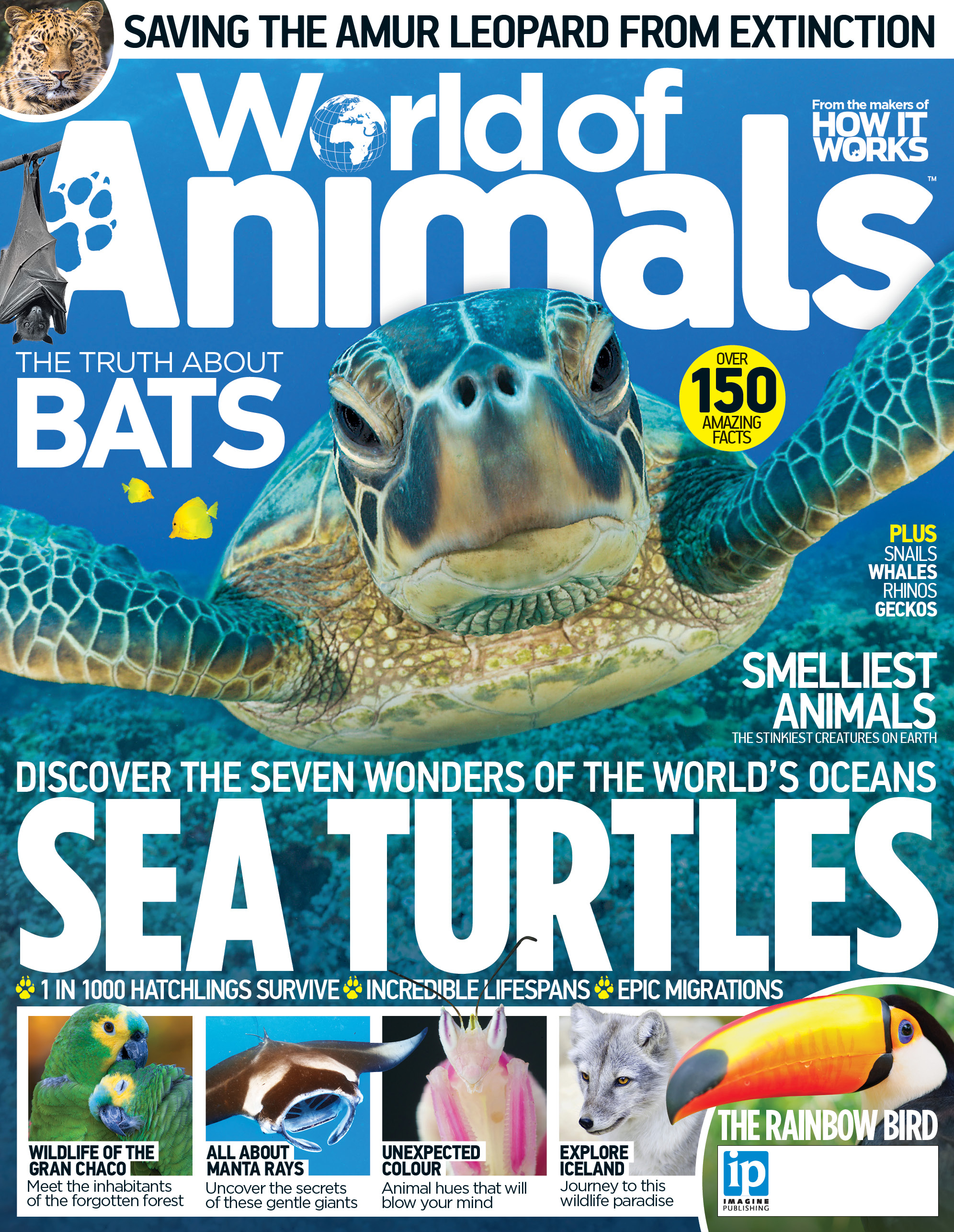 World of Animals Front Cover.jpg