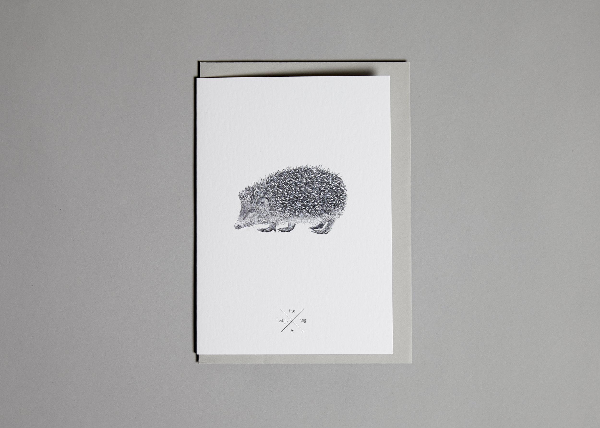 Cards Hedgehog.jpg