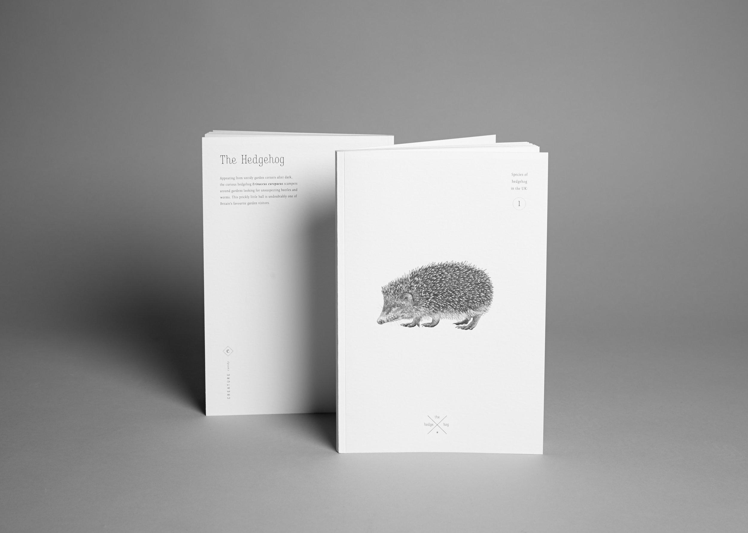 Note Book Hedgehog.jpg