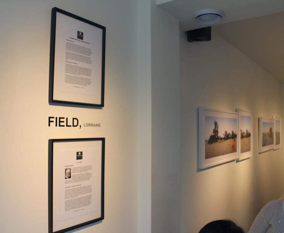 Field - Installtions Bio.jpg