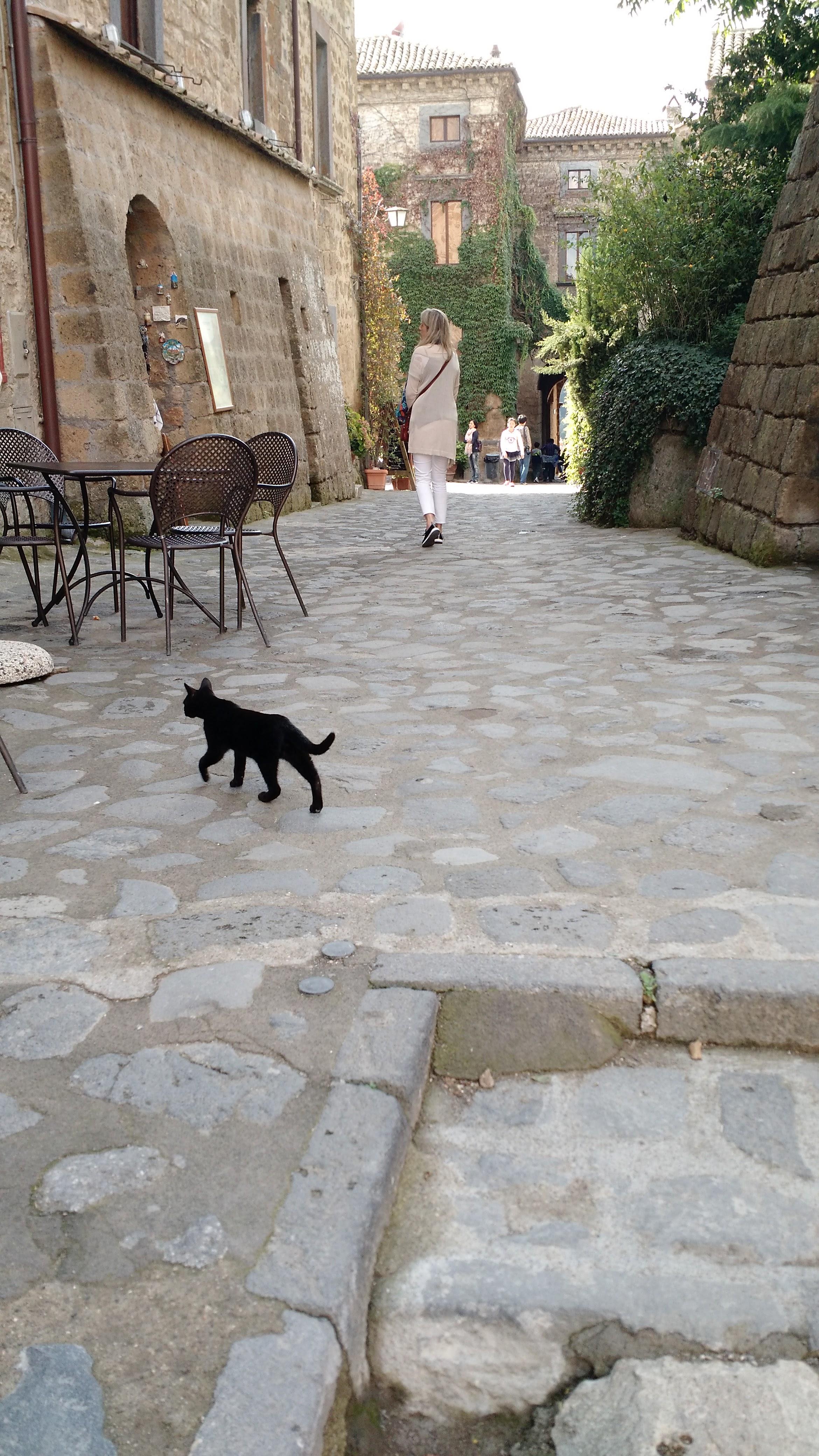 In the town of Civiti di Bagnoreggio