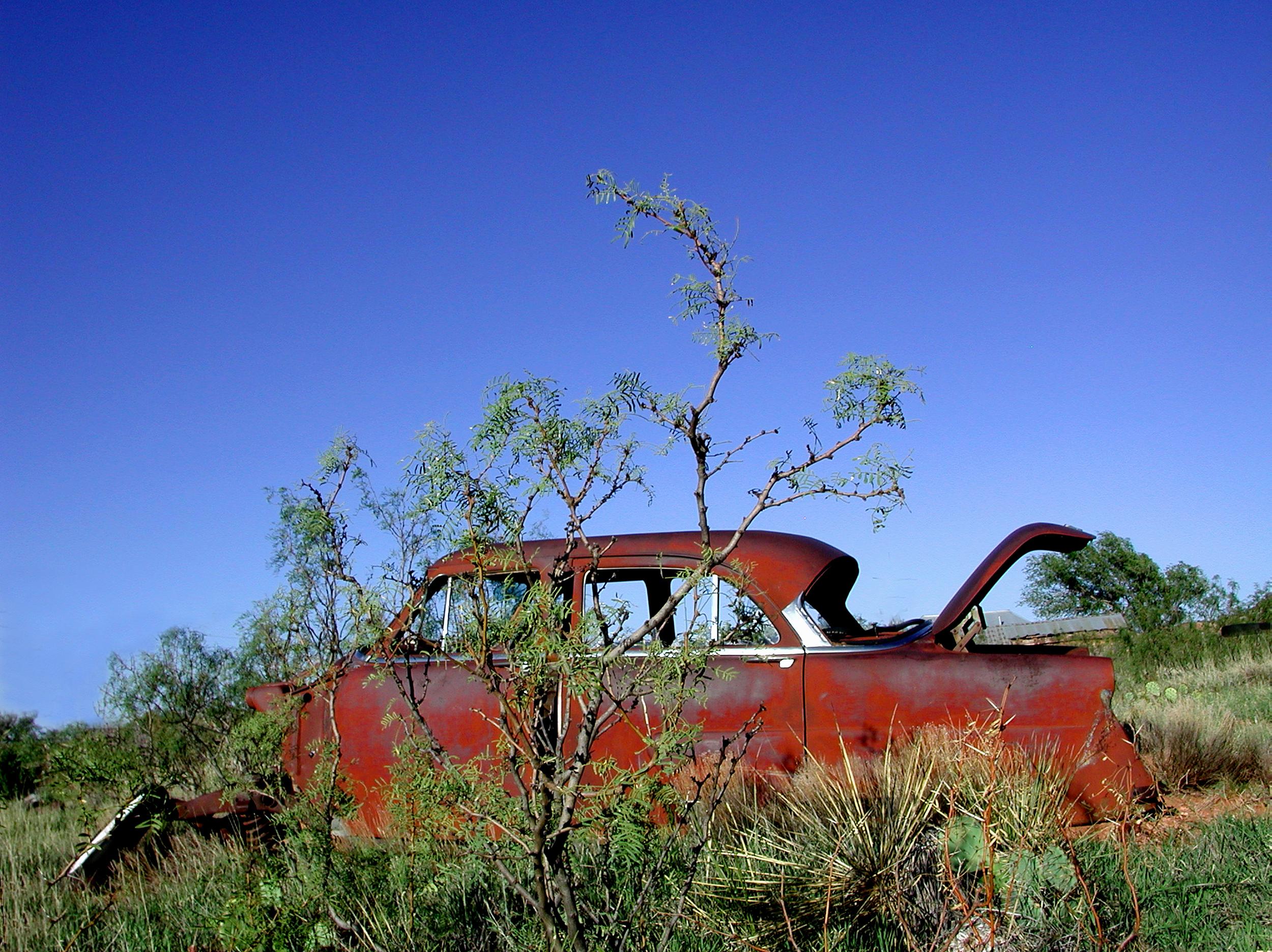car in the cactus.jpg