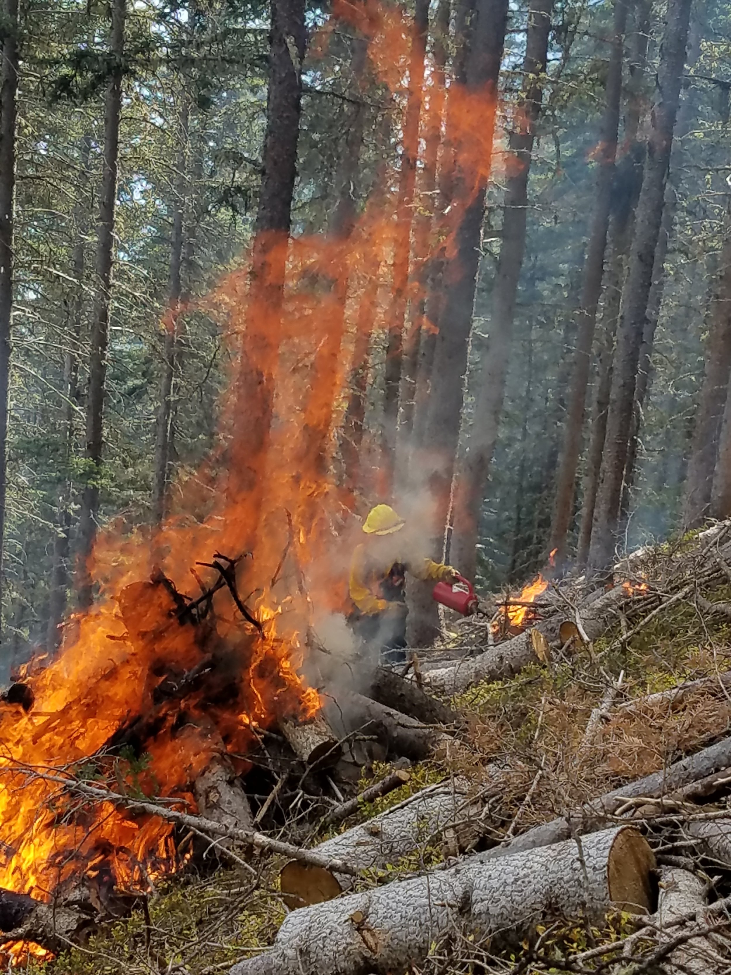 DonCon on Fire with TSV Wildland Crew