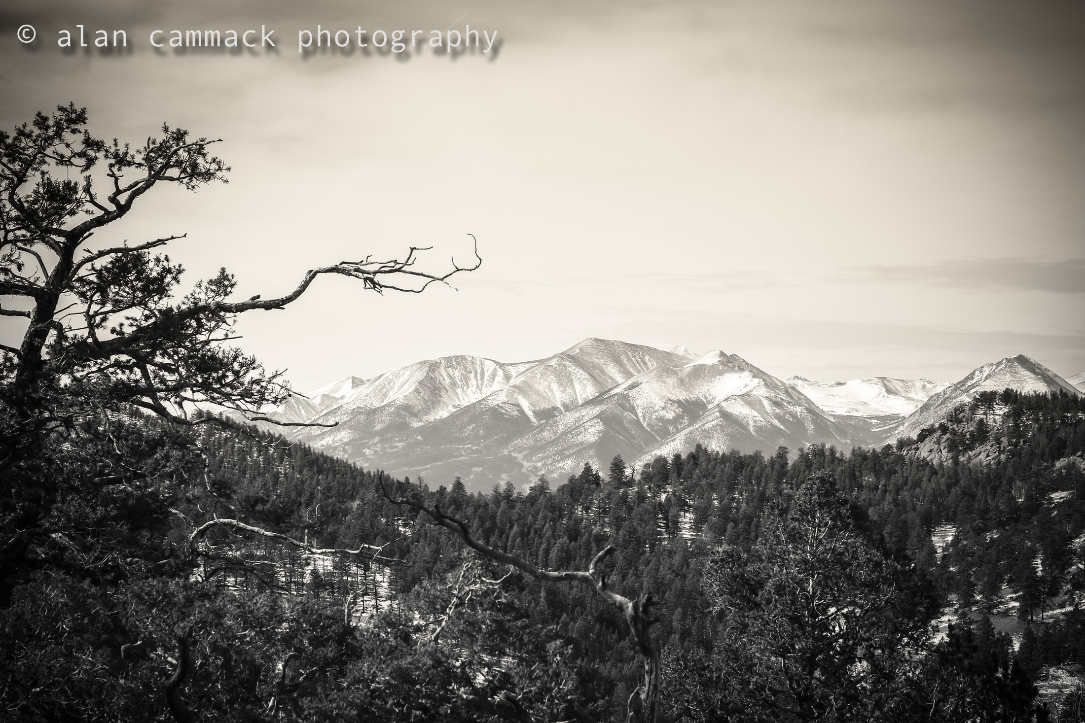 Sawatch Mountains